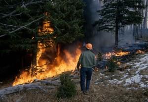 wildfire-1160857_1280