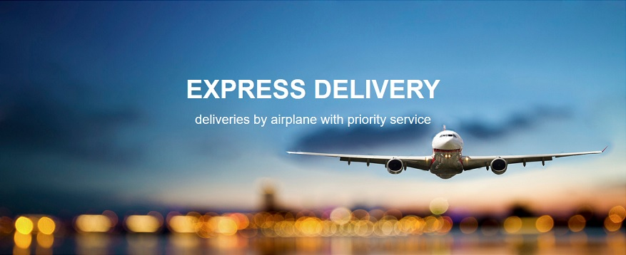 delnext_blog_express_delivery